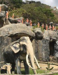 Dambulla-Höhlentempel-Sri Lanka-Studienreisen